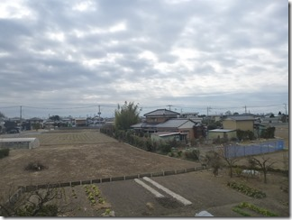 加須市戸室W様 東京スカイツリー方向の景色。