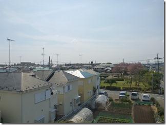 羽生市南O様 東京スカイツリー方向の景色(完了)。