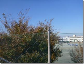 熊谷市妻沼S様 前橋局方向の景色(完了)。