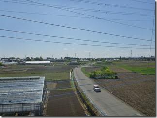 鴻巣市屈巣S様 東京スカイツリー方向の景色(完了)。