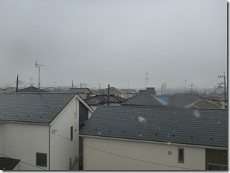 桶川市上日出谷T様 東京スカイツリー方向の景色(完了)。
