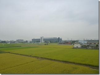 熊谷市佐谷田M様 東京スカイツリー方向の景色(完了)。