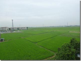 鴻巣市広田A様 東京スカイツリー方向の景色。