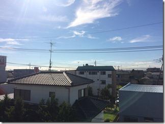 幸手市東A様 東京スカイツリー方向の景色(完了)。