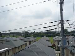 伊奈町大針I様東京タワー方向。.jpg