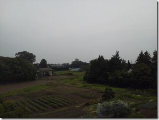 羽生市三田ケ谷S様 東京タワー方向の景色(完了)。