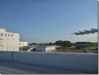鴻巣市赤城台D樣 東京スカイツリー方向の景色。
