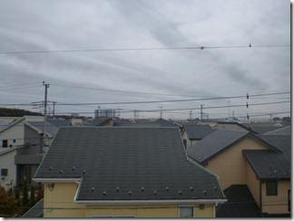 鴻巣市氷川町F様 東京タワー方向の景色(完了)。