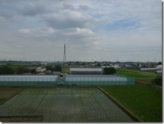 鴻巣市屈巣N樣 東京スカイツリー方向の景色。