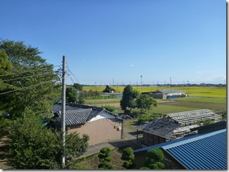 鴻巣市広田O様 東京タワー方向の景色(完了)。