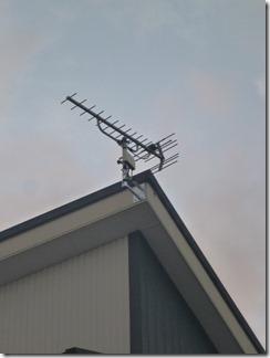 伊奈町大針S樣 アンテナ工事完了。