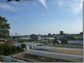 久喜市菖蒲町小林S様 東京タワー方向の景色(完了)。