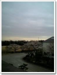 騎西町内田ヶ谷H様 受信方向東京タワー方向の景色。.jpg