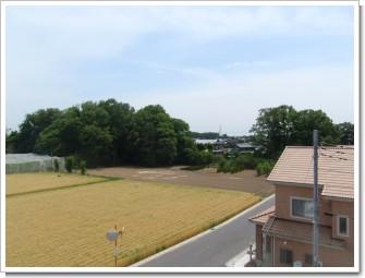 騎西町上崎A様 東京タワー方向の景色。.JPG