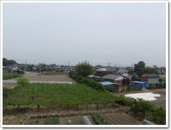 騎西町戸室W様 東京タワー方向の景色。.JPG