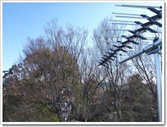 桶川市倉田N様 東京タワー方向の景色(完了)。.JPG