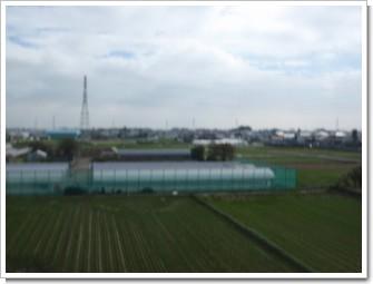 鴻巣市屈巣N様 東京タワー方向の景色。.JPG