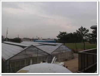 鴻巣市新井A様 東京タワー方向の景色。.JPG