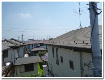 鴻巣市赤見台O様 東京タワー方向の景色(完了)。.JPG