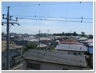 鴻巣市大間N様 東京タワー方向の景色(完了)。.JPG