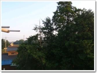 蓮田市黒浜H様 東京タワー方向の景色。.JPG