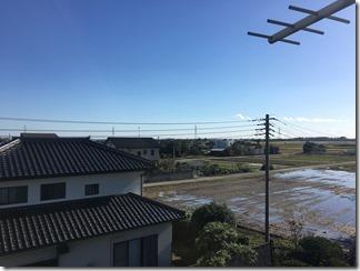 鴻巣市新井A様 東京スカイツリー方向の景色。